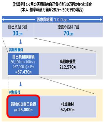 修正_高額療養費制度.png